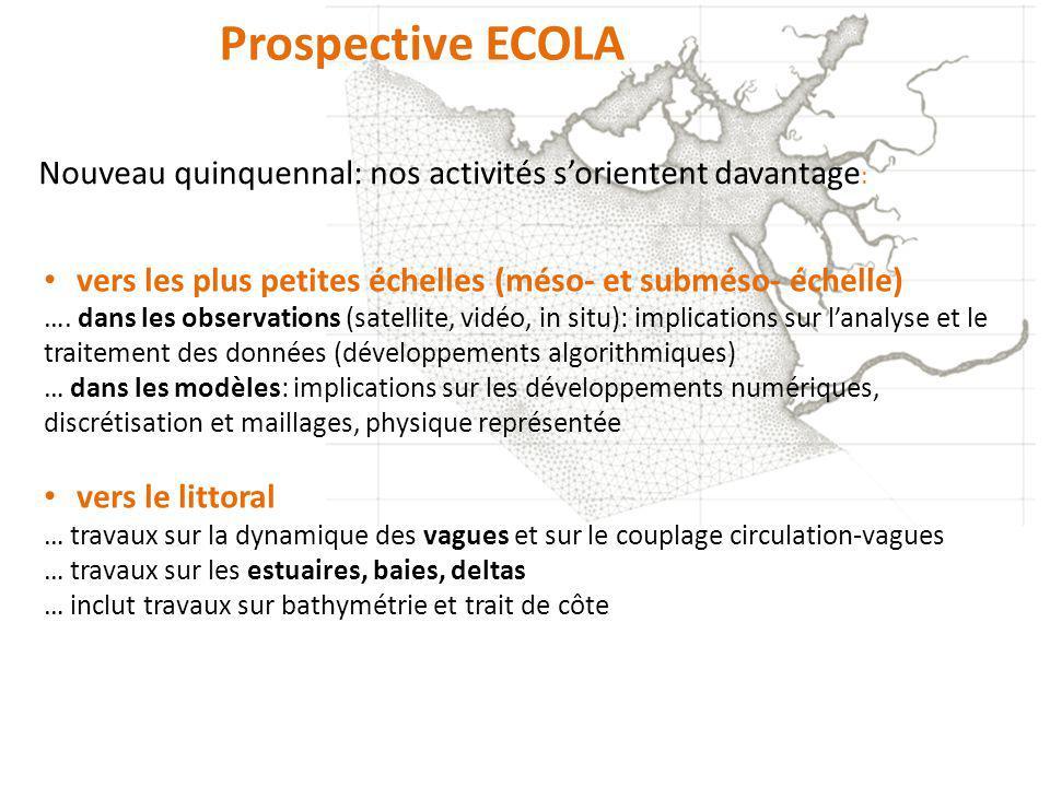 Prospective ECOLA vers les plus petites échelles (méso- et subméso- échelle) …. dans les observations (satellite, vidéo, in situ): implications sur la