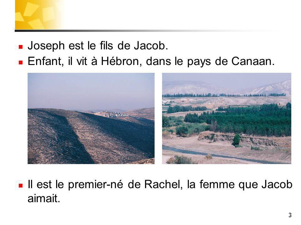 Pause 1 Qui est Rachel .4 Rachel est la seconde femme de Jacob .