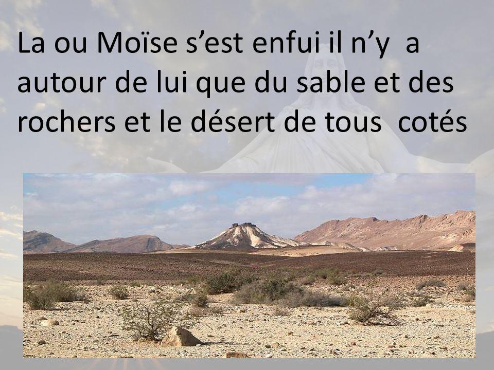 La ou Moïse sest enfui il ny a autour de lui que du sable et des rochers et le désert de tous cotés