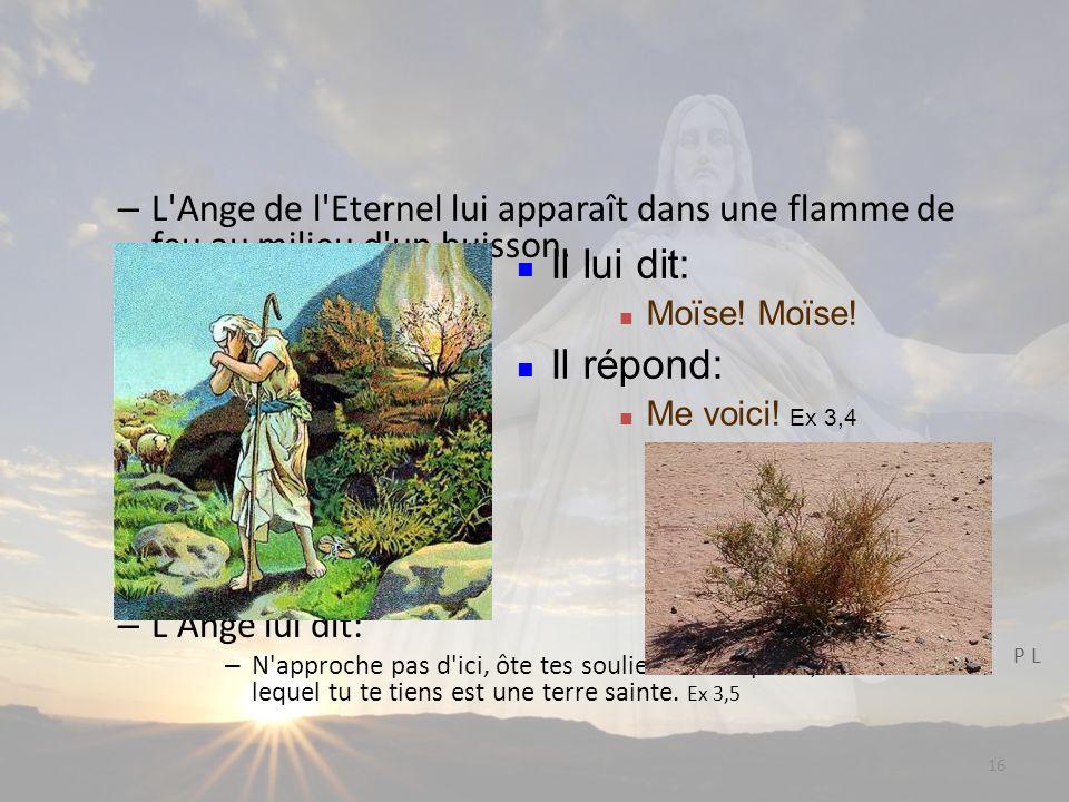 16 – L Ange de l Eternel lui apparaît dans une flamme de feu au milieu d un buisson.