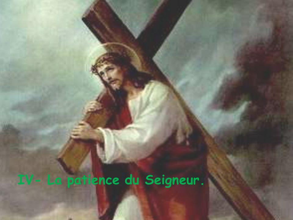 IV- La patience du Seigneur.