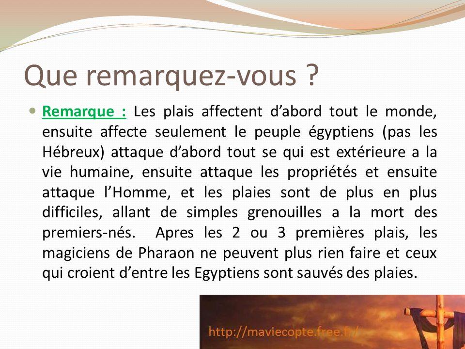 Que remarquez-vous ? Remarque : Les plais affectent dabord tout le monde, ensuite affecte seulement le peuple égyptiens (pas les Hébreux) attaque dabo