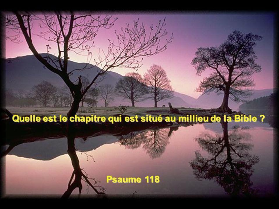 Quelle est le plus long chapitre de la Bible ? Le Psaume 119