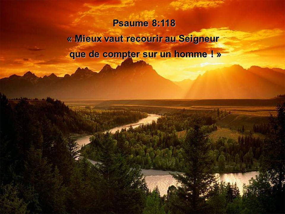 Psaume 8:118 « Mieux vaut recourir au Seigneur « Mieux vaut recourir au Seigneur que de compter sur un homme .