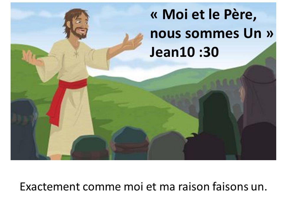 « Moi et le Père, nous sommes Un » Jean10 :30 Exactement comme moi et ma raison faisons un.