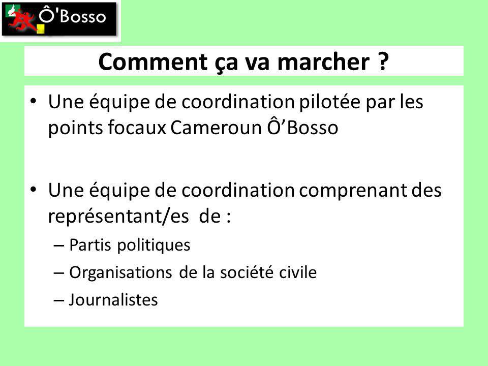 Comment ça va marcher ? Une équipe de coordination pilotée par les points focaux Cameroun ÔBosso Une équipe de coordination comprenant des représentan