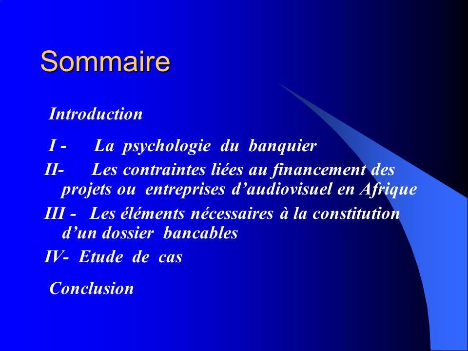 Sommaire Introduction I - La psychologie du banquier II- Les contraintes liées au financement des projets ou entreprises daudiovisuel en Afrique III - Les éléments nécessaires à la constitution dun dossier bancables IV- Etude de cas Conclusion