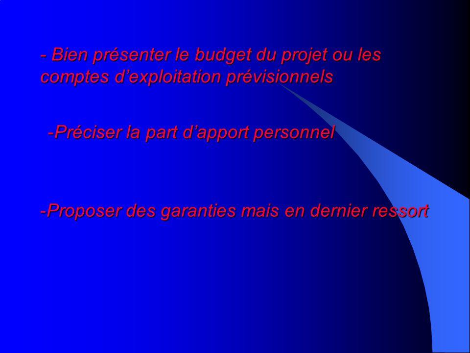- Bien présenter le budget du projet ou les comptes dexploitation prévisionnels -Préciser la part dapport personnel -Proposer des garanties mais en dernier ressort
