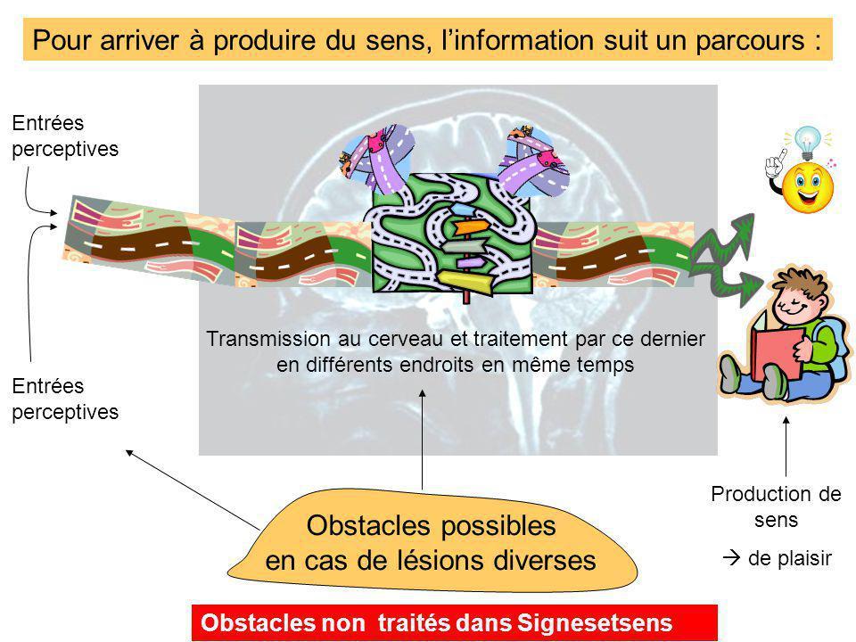 Pour arriver à produire du sens, linformation suit un parcours : Entrées perceptives Transmission au cerveau et traitement par ce dernier en différent