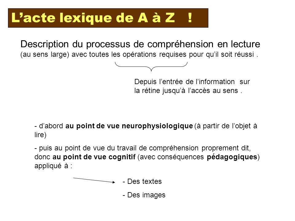 Description du processus de compréhension en lecture (au sens large) avec toutes les opérations requises pour quil soit réussi.