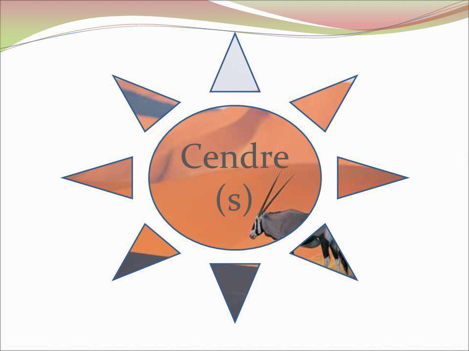 Cendre (s)