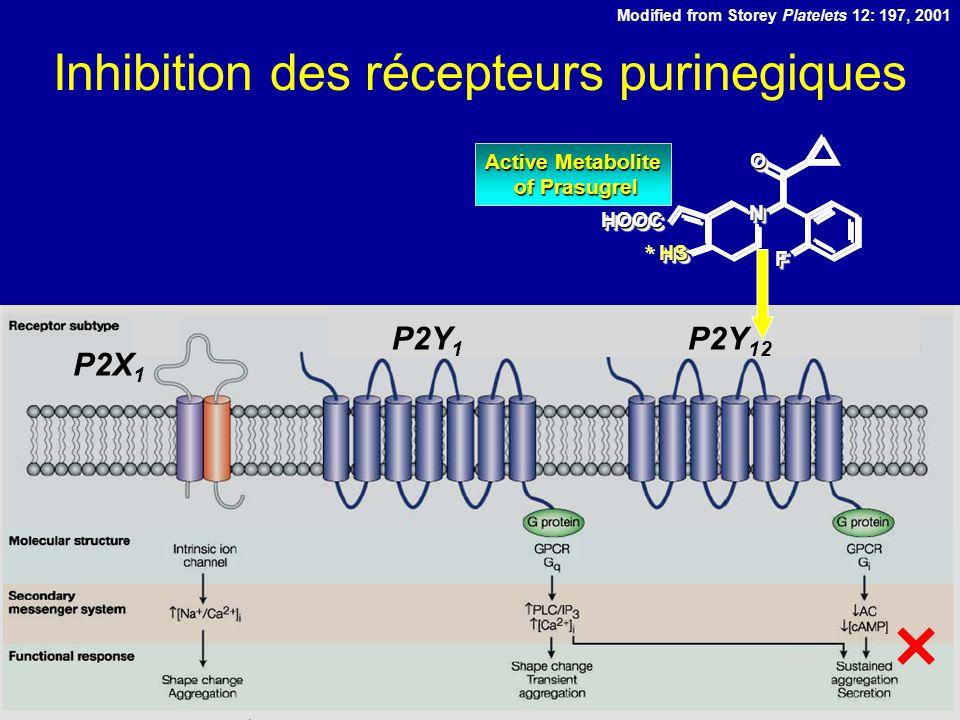 Payne et al, ISTH, 2005 ng/ml Minutes ng*hr/ml Niveaux des métabolites actifs Prasugrel 60mg Clopidogrel 300mg Time from Dose (hr) 06121824 Plasma Concentration (ng/mL) 0 100 200 300 400 500 600 300 mg Clopidogrel 60 mg Prasugrel