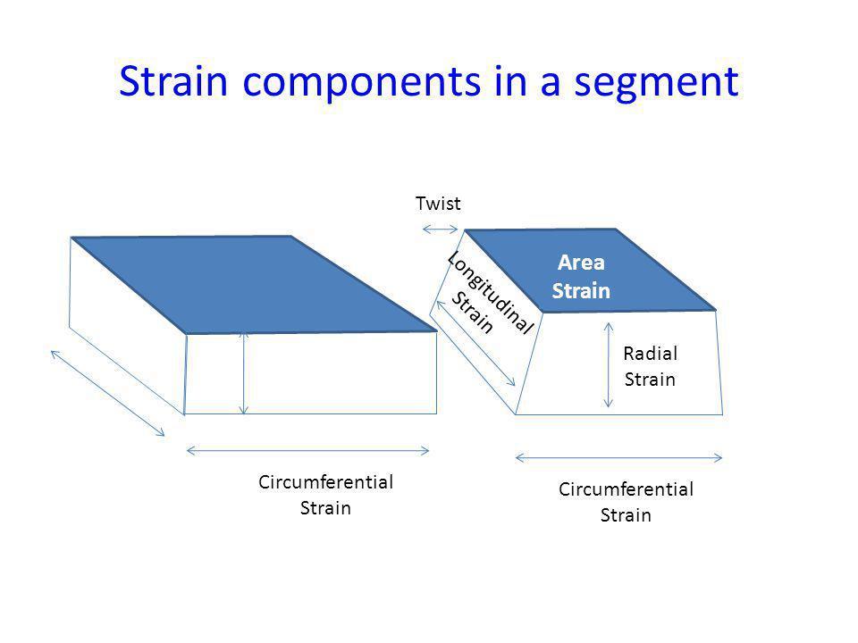 Strain components in a segment Circumferential Strain Circumferential Strain Longitudinal Strain Radial Strain Twist Area Strain