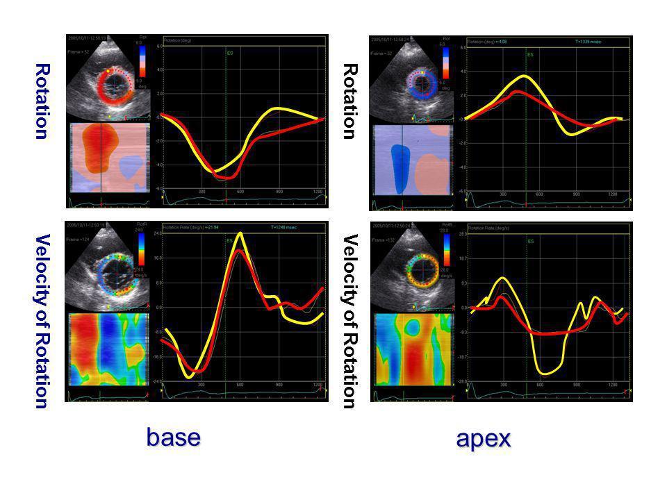 base apex Rotation Velocity of Rotation
