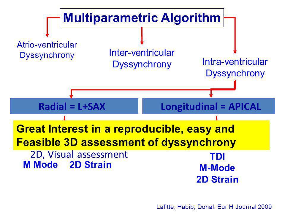Radial = L+SAX 2D, Visual assessment M Mode 2D Strain Longitudinal = APICAL 2D, Visual assessment TDI M-Mode 2D Strain Atrio-ventricular Dyssynchrony