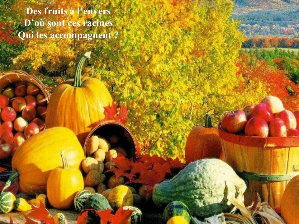 Des fruits à lenvers Doù sont ces racines Qui les accompagnent ?