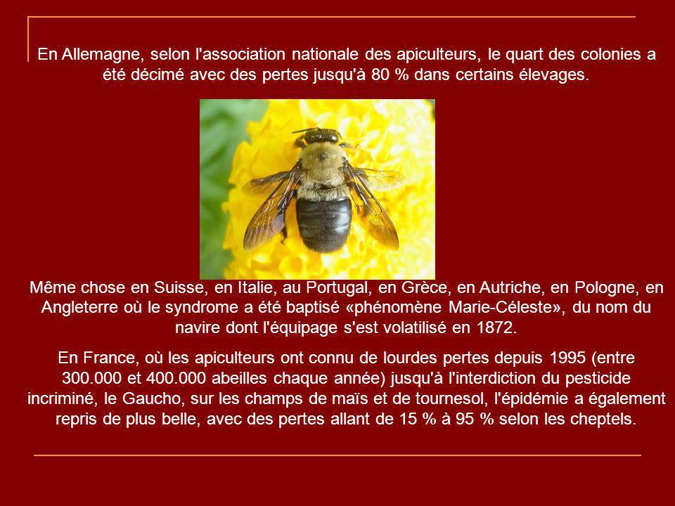 C est une incroyable épidémie, d une violence et d une ampleur faramineuse, qui est en train de se propager de ruche en ruche sur la planète.