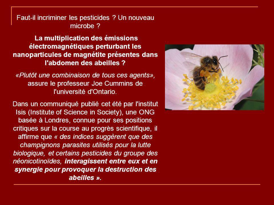 Faut-il incriminer les pesticides .Un nouveau microbe .