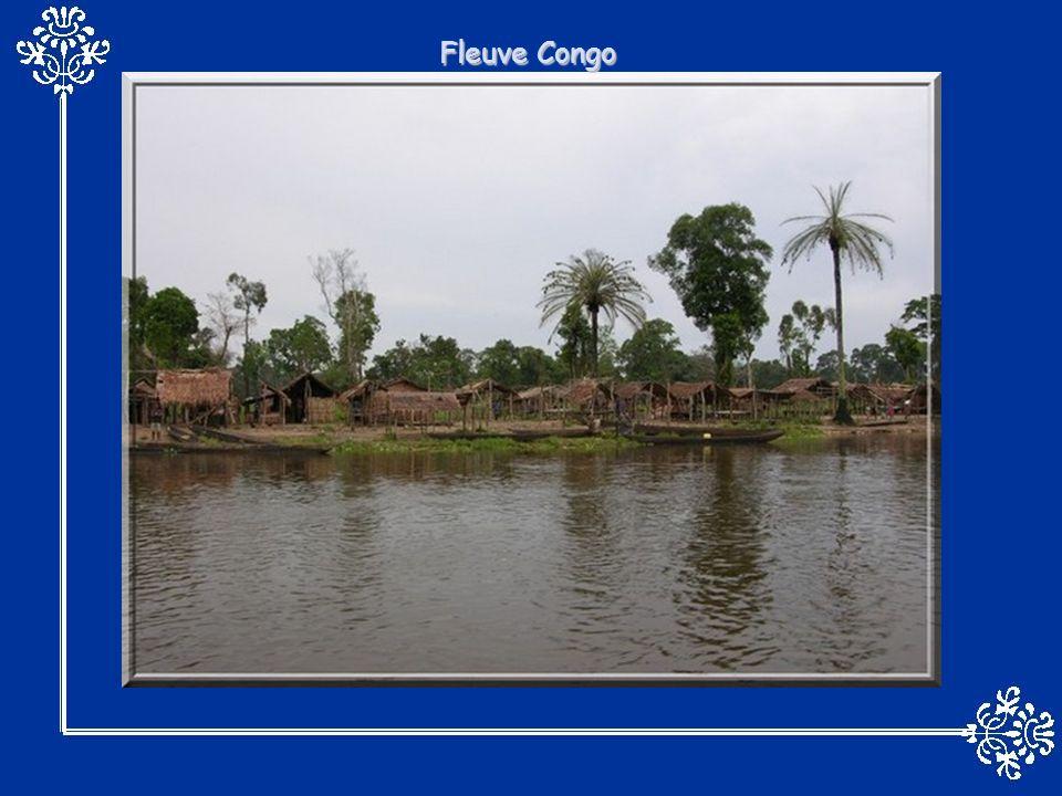 La profonde cicatrice qui entaille les plateaux de lArizona résulte de millions dannées dérosion fluviale.