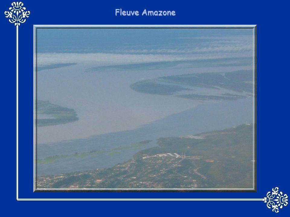 Je vous propose aujourdhui un survol autour de la planète afin dadmirer quelques uns des plus beaux fleuves qui la sillonnent Les eaux de ces grands fleuves détiennent des records à leur mesure parmi lesquels on retrouve : -le Nil: le plus long fleuve du monde avec 6671 kilomètres.