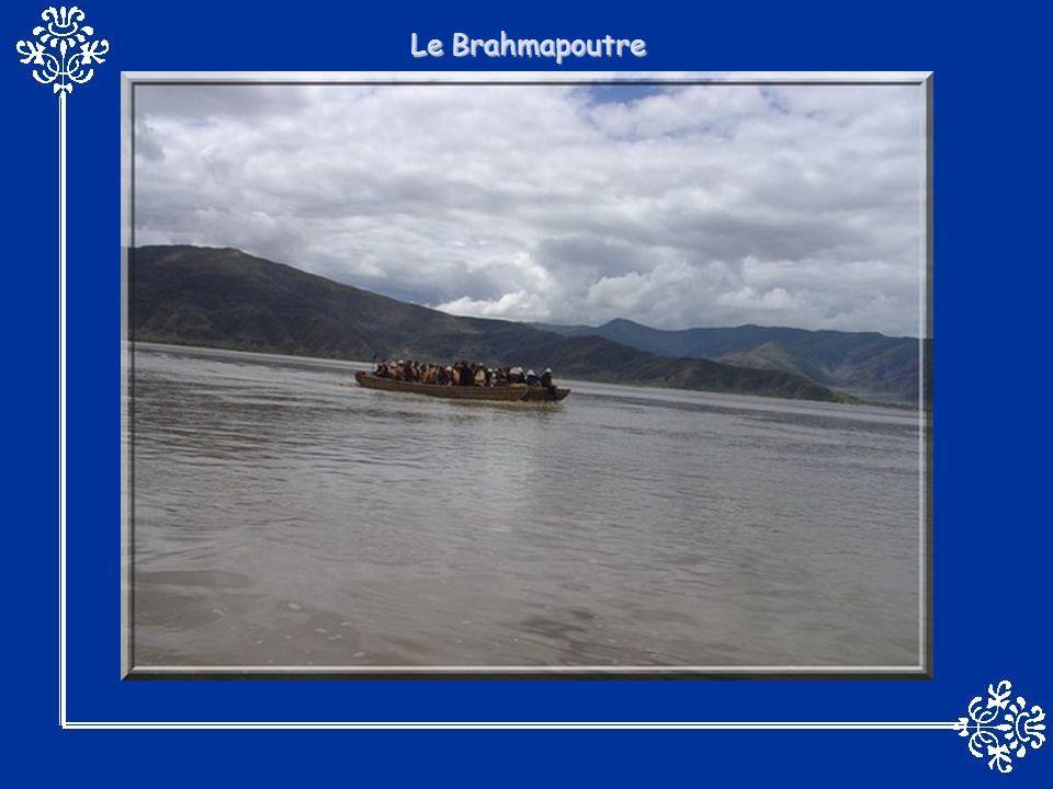 LAmazone est un fleuve qui coule en Amérique du Sud.