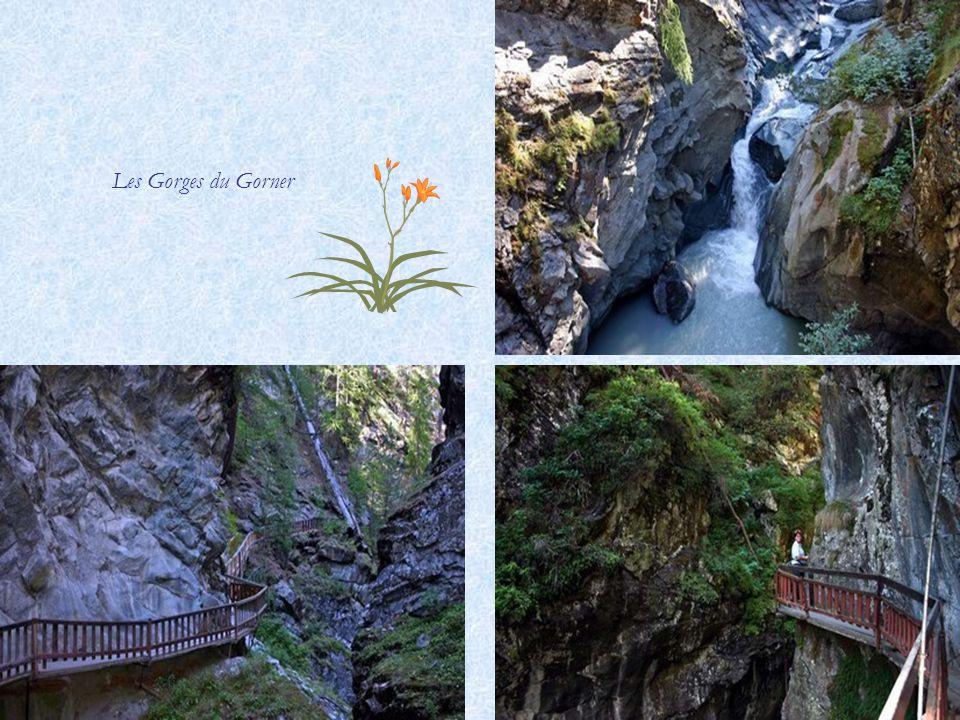Grünsee 2300 m. (Lac Vert) Cabane du Grünsee
