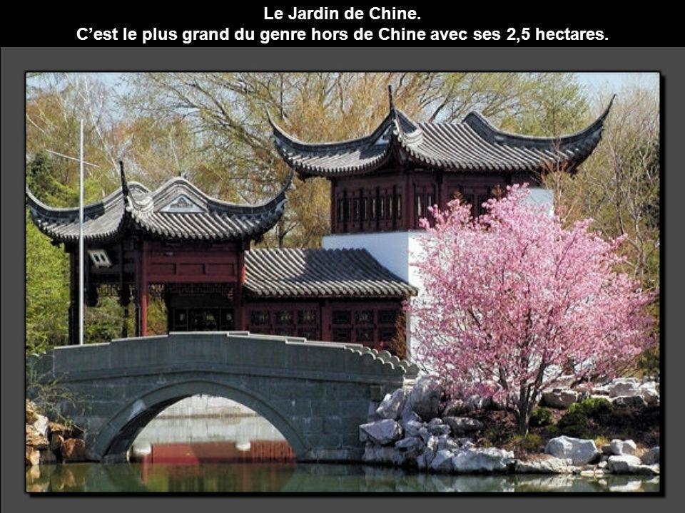 Le Jardin de Chine. Cest le plus grand du genre hors de Chine avec ses 2,5 hectares.
