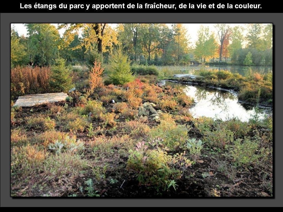 Les étangs du parc y apportent de la fraîcheur, de la vie et de la couleur.