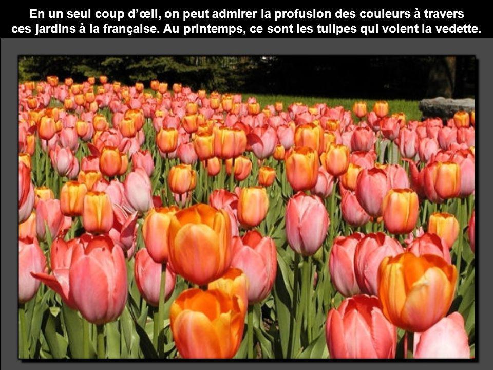 En un seul coup dœil, on peut admirer la profusion des couleurs à travers ces jardins à la française. Au printemps, ce sont les tulipes qui volent la
