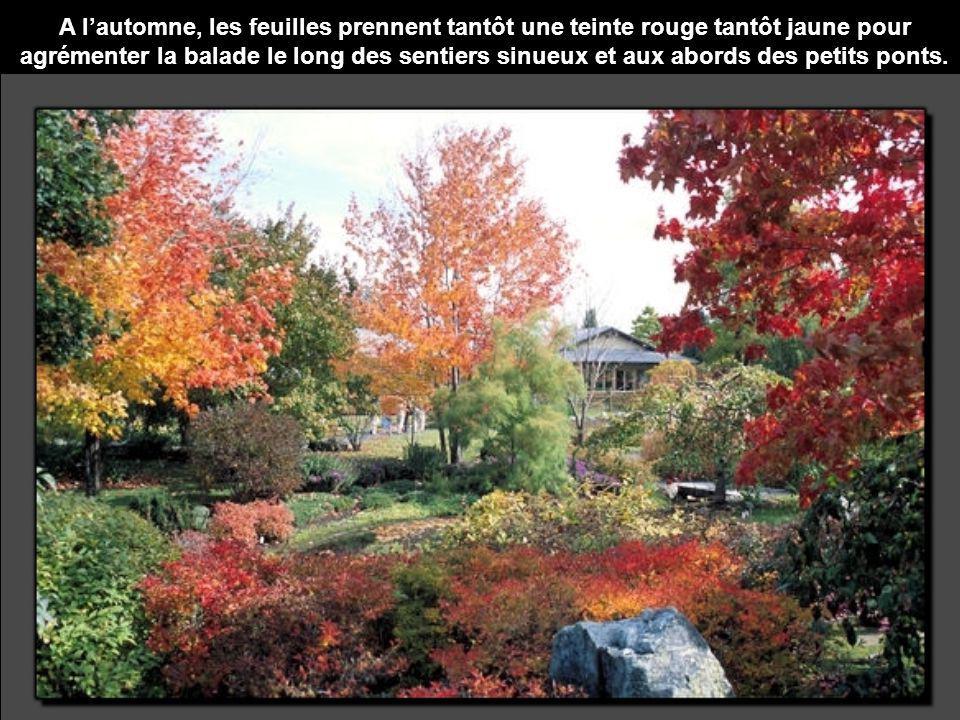 A lautomne, les feuilles prennent tantôt une teinte rouge tantôt jaune pour agrémenter la balade le long des sentiers sinueux et aux abords des petits