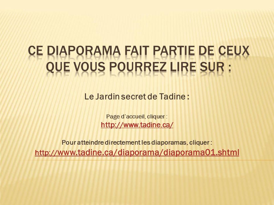 Le Jardin secret de Tadine : Page daccueil, cliquer : http://www.tadine.ca/ Pour atteindre directement les diaporamas, cliquer : http:// www.tadine.ca/diaporama/diaporama01.shtml