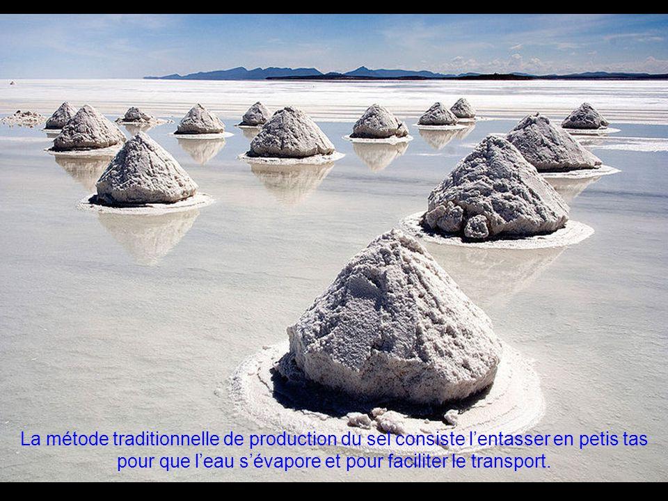 On estime que la saline d'Uyuni contient environ 10 milliards de tonnes de le sel, 25 mille tonnes sont extraites annuellement.