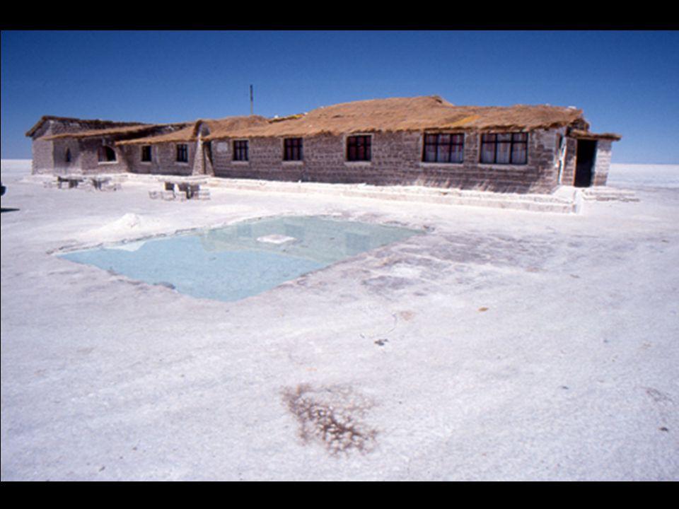 Ces blocs de sel sont utilisés pour la construction d'hôtels de sel.