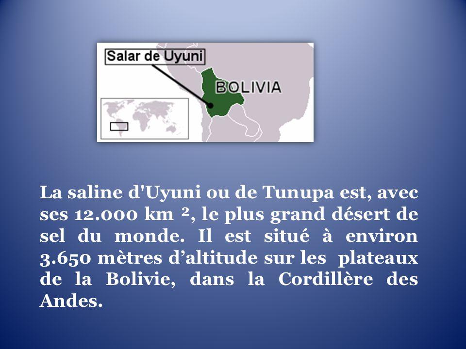 La saline d Uyuni ou de Tunupa est, avec ses 12.000 km ², le plus grand désert de sel du monde.