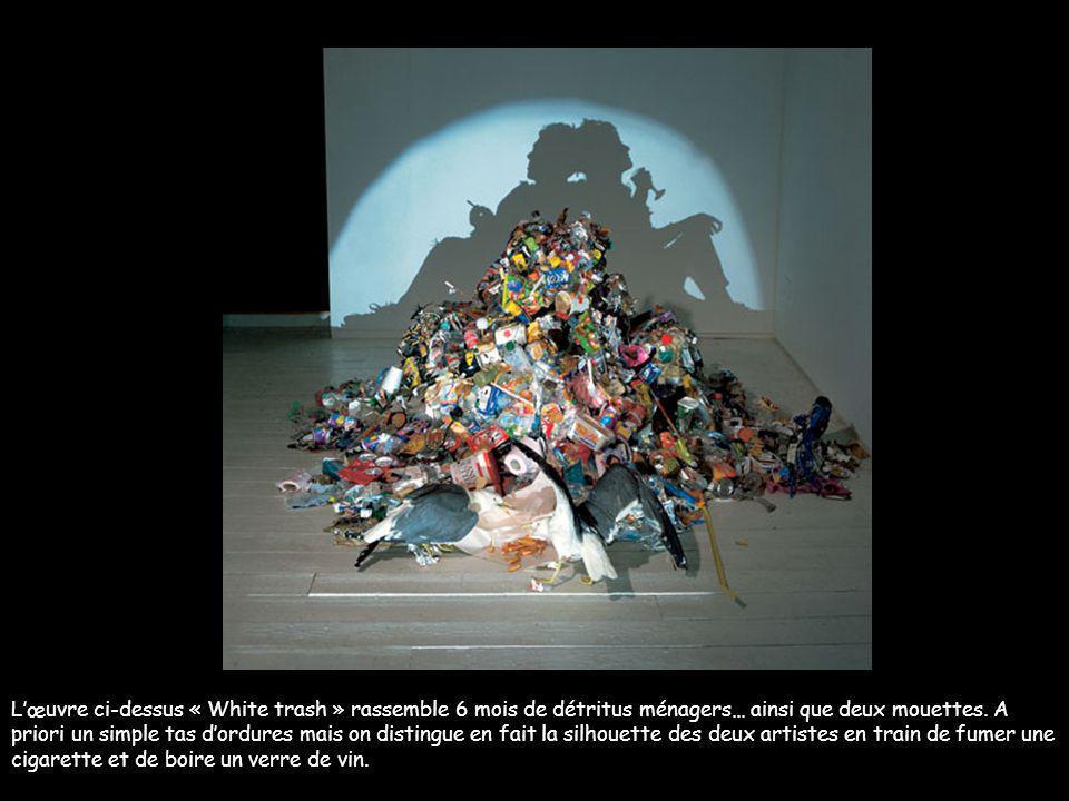 Chinoiseries Londoniènnes Tim Noble et Sue Webster sont deux artistes britanniques dont les oeuvres sont étranges. Avec des matériaux courants ramassé