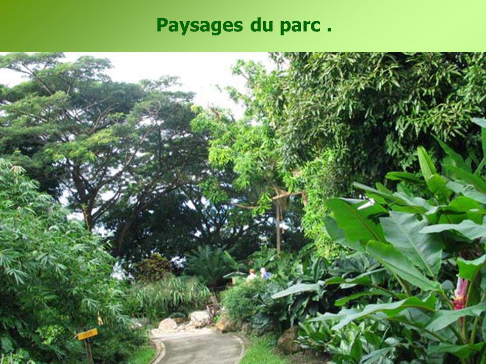 Paysages du parc.