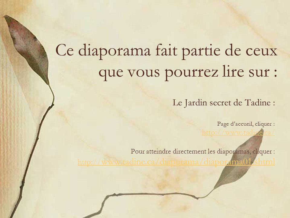 Ce diaporama fait partie de ceux que vous pourrez lire sur : Le Jardin secret de Tadine : Page daccueil, cliquer : http://www.tadine.ca/ Pour atteindre directement les diaporamas, cliquer : http:// www.tadine.ca/diaporama/diaporama01.shtml