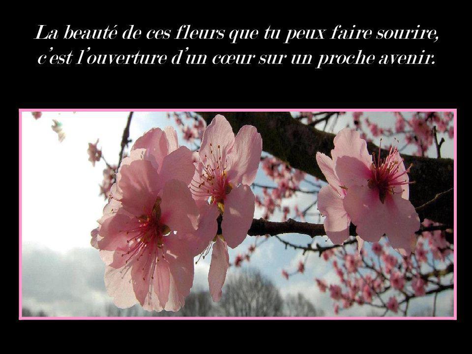 La beauté de ces fleurs que tu peux faire sourire, cest louverture dun cœur sur un proche avenir.