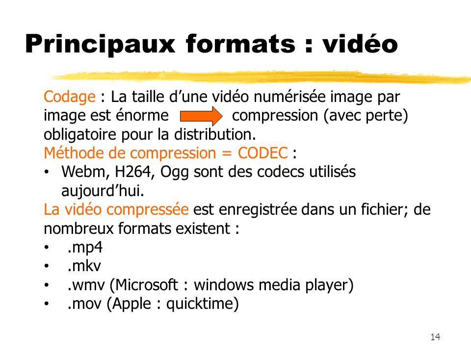 Principaux formats : vidéo 14 Codage : La taille dune vidéo numérisée image par image est énorme compression (avec perte) obligatoire pour la distribu
