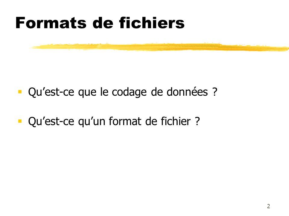 Formats de fichiers Quest-ce que le codage de données ? Quest-ce quun format de fichier ? 2
