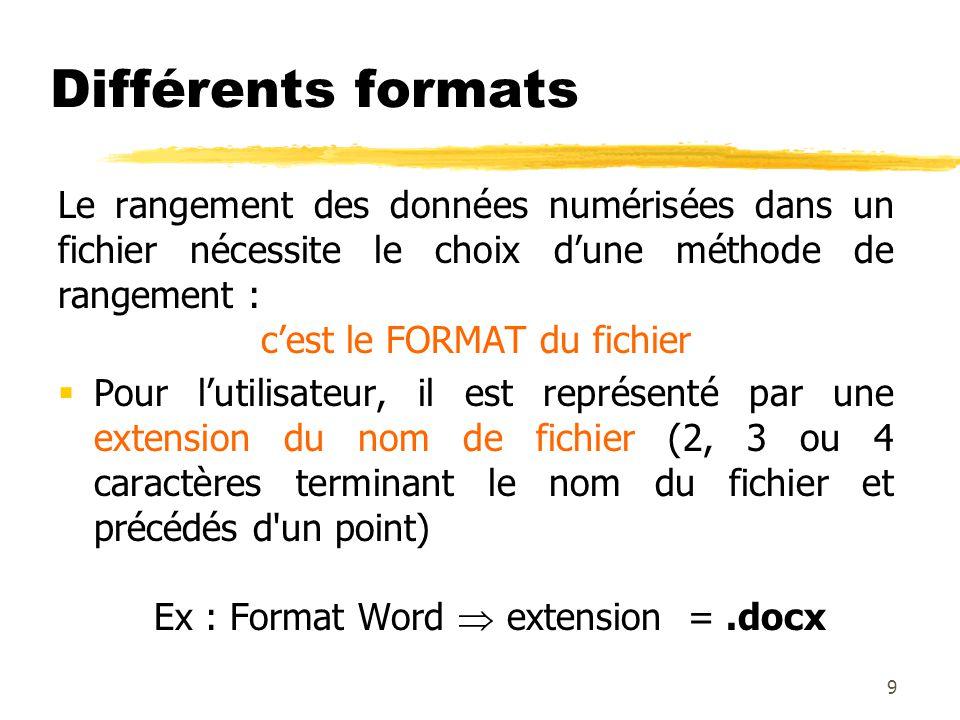Différents formats Le rangement des données numérisées dans un fichier nécessite le choix dune méthode de rangement : cest le FORMAT du fichier Pour l