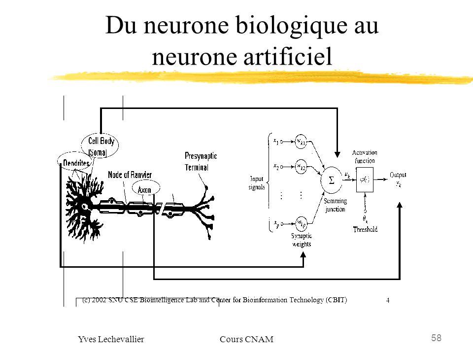 58 Yves Lechevallier Cours CNAM Du neurone biologique au neurone artificiel