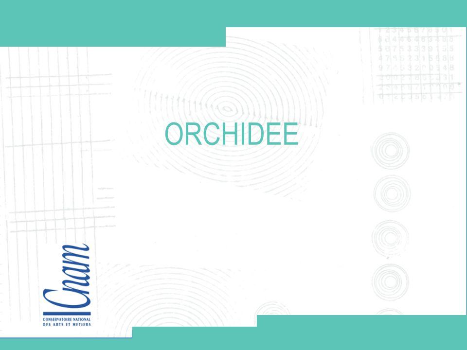 Conservatoire national des arts et métiers STIC 16/09 www.cnam.frwww.cnam.fr12 Votre titre ORCHIDÉE 12 Module de définition des sujets de travaux Démonstration http://deptinfo.cnam.fr/~graffion/Orchidee/captureDefinitionSujetsGLG101.htm