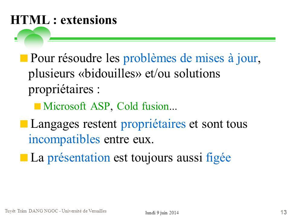 lundi 9 juin 2014 Tuyêt Trâm DANG NGOC - Université de Versailles 13 HTML : extensions Pour résoudre les problèmes de mises à jour, plusieurs «bidouil