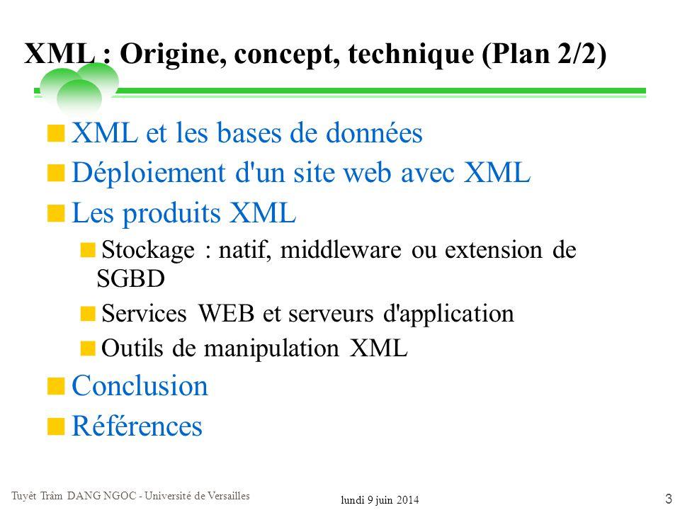 lundi 9 juin 2014 Tuyêt Trâm DANG NGOC - Université de Versailles 24 La norme XML (eXtensible Markup Language) Recommandation W3C en février 1998 but: ajouter une signification au contenu à travers sa structure Définition de la structure à travers des balises (tags) XML 1.0 10 fev.