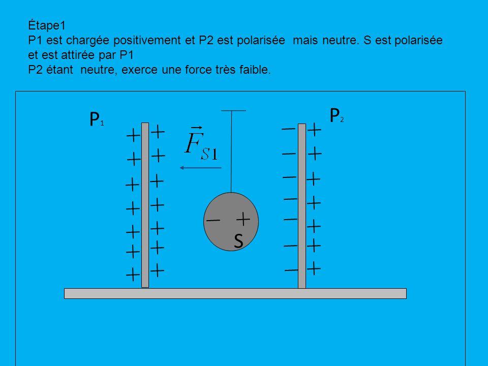 P1P1 P2P2 S Étape1 P1 est chargée positivement et P2 est polarisée mais neutre.