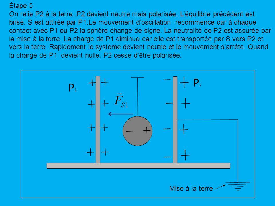 Étape 5 On relie P2 à la terre. P2 devient neutre mais polarisée.