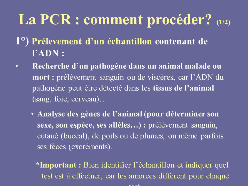 La PCR : comment procéder? (1/2) 1°) Prélevement dun échantillon contenant de lADN : Recherche dun pathogène dans un animal malade ou mort : prélèveme