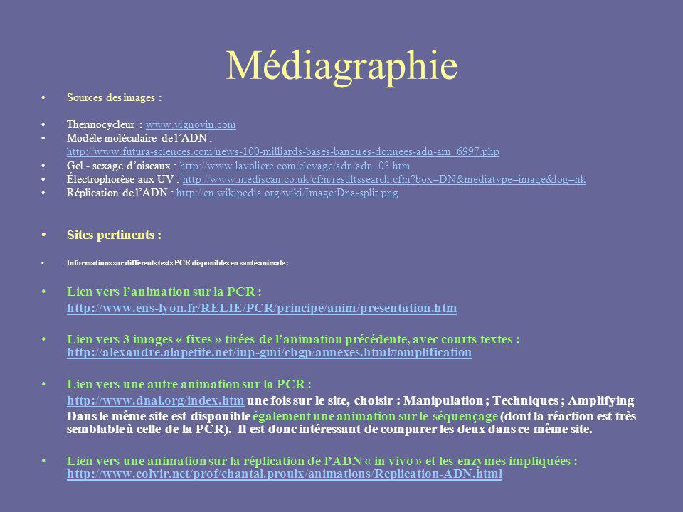 Médiagraphie Sources des images : Thermocycleur : www.vignovin.comwww.vignovin.com Modèle moléculaire de lADN : http://www.futura-sciences.com/news-10