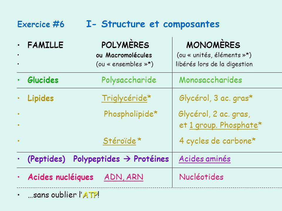 Exercice #6 I- Structure et composantes FAMILLEPOLYMÈRESMONOMÈRES ou Macromolécules (ou « unités, éléments »*) (ou « ensembles »*) libérés lors de la